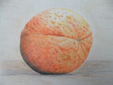 - artwork Orange-1306108564.jpg - 2011, Drawing Pencil, Still Life