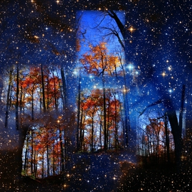 The Face of Forever By Dave Martsolf