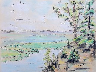 Dave Martsolf: 'shenandoah', 1976 Pastel, Abstract Landscape. Artist Description: Shenandoah was created in 1976 after a trip through the region.  The medium is a combination of ink and pastel on paper. ...