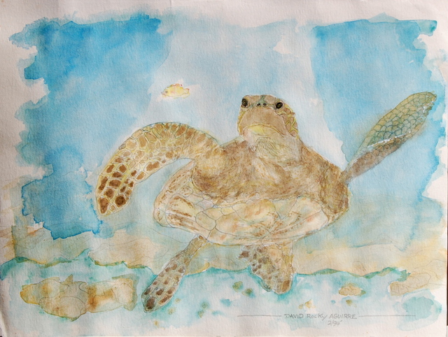 David Rocky Aguirre  'Hawaiian Turtle', created in 1994, Original Drawing Pen.