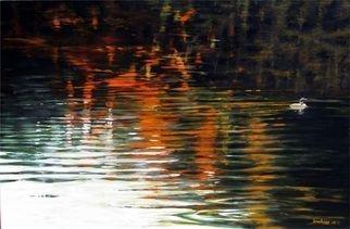David Larkins Artwork Autumn Loon, 2015 Autumn Loon, Birds