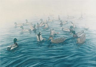 David Larkins: 'Duck Soup', 1994 Giclee, Wildlife. Living on the west end of Lake Erie all my life, one couldn' t help but be exposed to the multitude of wildlife that lives in the marshes and shoreline.