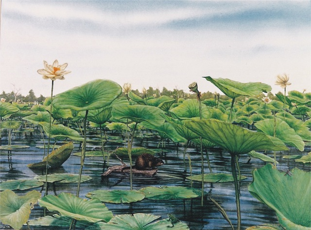 David Larkins  'Monroe Lotus Beds', created in 1991, Original Giclee Reproduction.