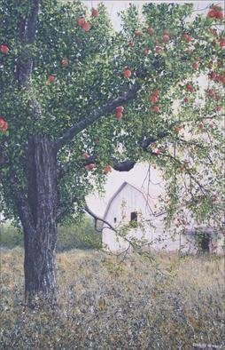 David Larkins: 'Sweet Nostalgia', 2005 Giclee, Americana. I was captivated by the allegorical effect of the abandoned apple orchard in