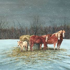 Snowy Evening, David Larkins