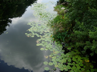 Artist: Debra Ann Reilly - Title: Tranquility - Medium: Color Photograph - Year: 2010