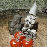 Garden Angel, Gnome and Tomatoes By Debra Cortese