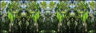 Debra Cortese Artwork Travellers Palm Totem Panel e series, 2006 Mixed Media, Nature