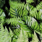 Tropical Patterns Ferns And Leaves  , Debra Cortese