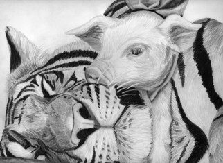 Dee-ann Lancaster Artwork 'Sleeping with the Enemy', 2007. Pencil Drawing. Animals. ...