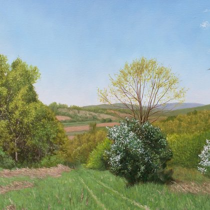 , The Meadow In Spring, Landscape, $1,785