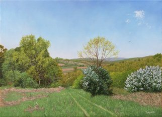 Dejan Trajkovic: 'the meadow in spring', 2017 Oil Painting, Landscape. Artist Description: Oil on linen. Stretched canvas, unframed for now. Painted with high quality oil colors. Same scene I already painted in summer and winter. Autumn is also scheduled and it will be realized in next few months...