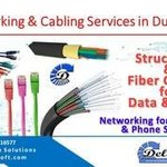 networking cabling dubai By Delicate Software