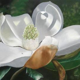 Delmus Phelps: 'Joys Magnolia', 2008 Oil Painting, Floral. Artist Description:  A neighbors delight.  All thats missing from this southern beauty is its sweet, sweet smell! Buy Now! before the gallery sells it! ...