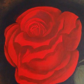 Red Rose, Denise Seyhun