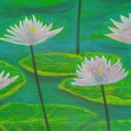pink water lilies By Denise Seyhun