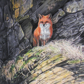 Dennis Mccallum Artwork Red Fox, 2016 Mixed Media, Animals