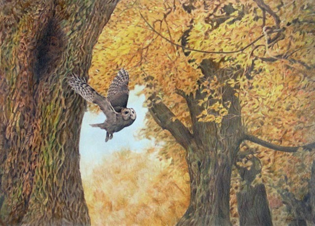 Dennis Mccallum  'Tawny Owls', created in 2010, Original Painting Other.