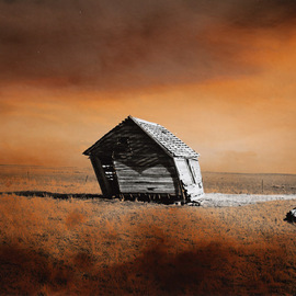 Denny Moers: 'Prairie Dwelling VIII', 1996 Other Photography, Abstract Landscape. Artist Description: This is a archival pigment print from an original silver chloride darkroom based photographic monoprint. See my website for moreinfo....
