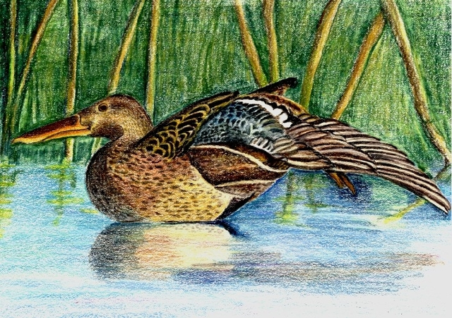 Deborah Paige Jackson  'The Shoveler', created in 2000, Original Drawing Pencil.