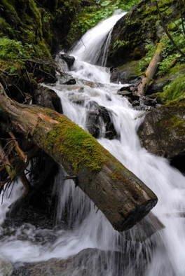 Color Photograph by Petri De Pit� titled: Mountain Stream, 2006