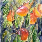 Peaches, Derek Mccrea