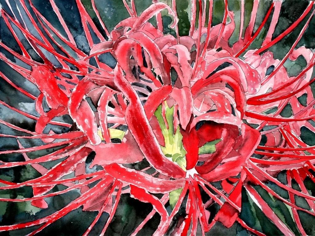 Derek mccrea artwork red spider lily flower painting original close x izmirmasajfo