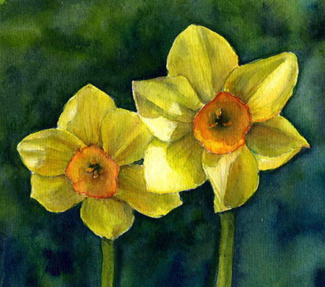 Melody Greenlief Lanies Narcissus 2010