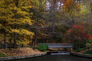 Artist: Dion Mcinnis - Title: Atlanta Fall - Medium: Color Photograph - Year: 2007