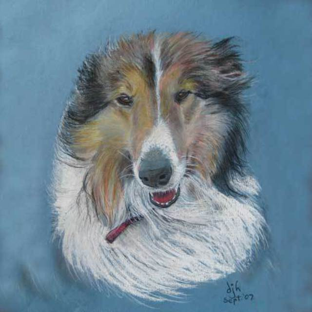Des Howell  'Rough Collie', created in 2008, Original Pastel.