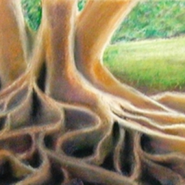 Dorothy Okray Artwork Under the Banyon Trees, 2008 Pastel, Landscape