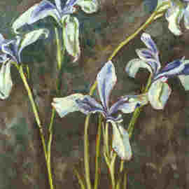 Donna Gallant: 'Spring Irises', 2001 Oil Painting, Floral. Artist Description:  A lovely delicate iris is executed in this piece. ...