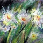 daisies By Donna Gallant