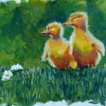ducklings By Donna Gallant