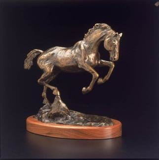 Bronze Sculpture by Donna Bernstein titled: Buck, created in 2001