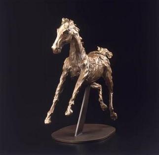 Donna Bernstein Artwork Gosling, 2001 Gosling, Animals
