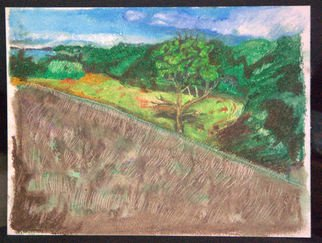 Don Schaeffer Artwork Coindre Hall, 2010 Oil Pastel, Landscape