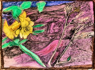 Don Schaeffer Artwork Frozen Daffodil, 2010 Oil Pastel, Floral