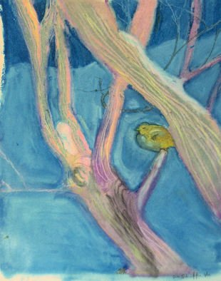 Don Schaeffer Artwork The Cold Little Bird, 2011 Oil Pastel, Nature