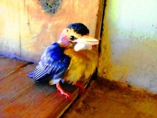 Artist: Oleti Joseph Andima - Title: STALAGAMITE KINGFISHER - Medium: Color Photograph - Year: 2012