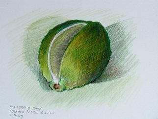 Pencil Drawing by Lou Posner titled: Lime, created in 2009