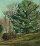 Artist: Lou Posner, title: Southbury Tree, 1982, Painting Oil
