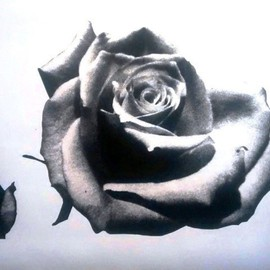 Edelweiss Calcagno Artwork Black Rose, 2015 Other Printmaking, Still Life