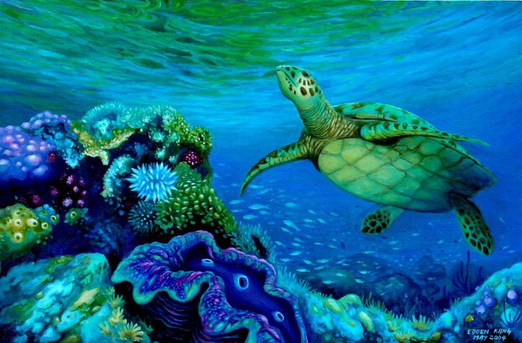 Edoen kang artwork green turtle and giant clam original for Sea life paintings artists