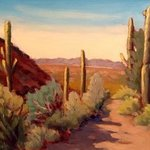 Saguaro Country Cave Creek Arizona By Edward Abela