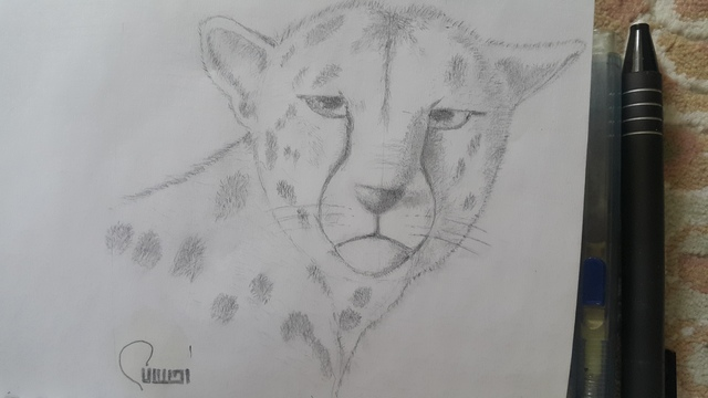Ehsan Dolatshahi  'Panter', created in 2018, Original Drawing Pencil.