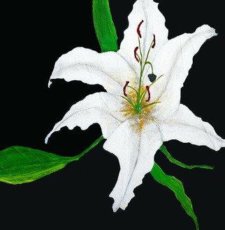 Elizabeth Bogard Artwork Tres Flores, Lily, 2015 Tres Flores, Lily, Abstract Figurative