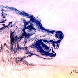 Elisha Sherman: 'Mohegan Wolf', 2004 Pencil Drawing, Mystical. Artist Description:  Dedicated to the surviving Tribe and Peoples of Norwich, CT ...