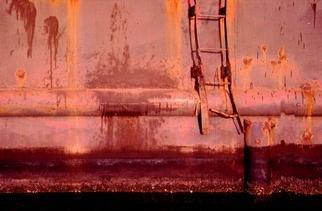 Artist: Ellen Spijkstra - Title: 14 - Medium: Color Photograph - Year: 2000