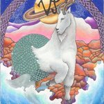 Astrology Signs Series By Patricia Morrrison